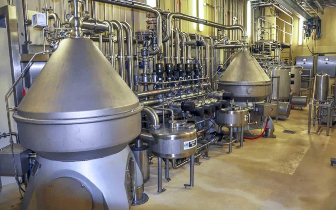 Low Spore Skim Milk Powder Project